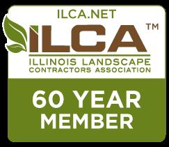 60 yr ILCA Member