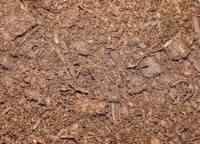 how to use mushroom compost in the garden